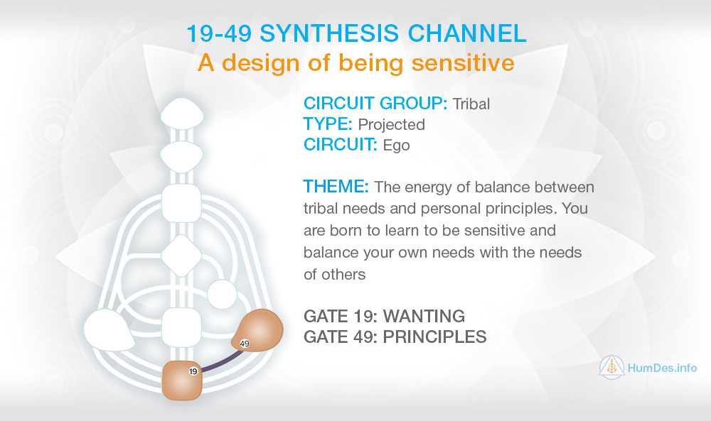 Channel 19-49 Human Design, Channel Synthesis