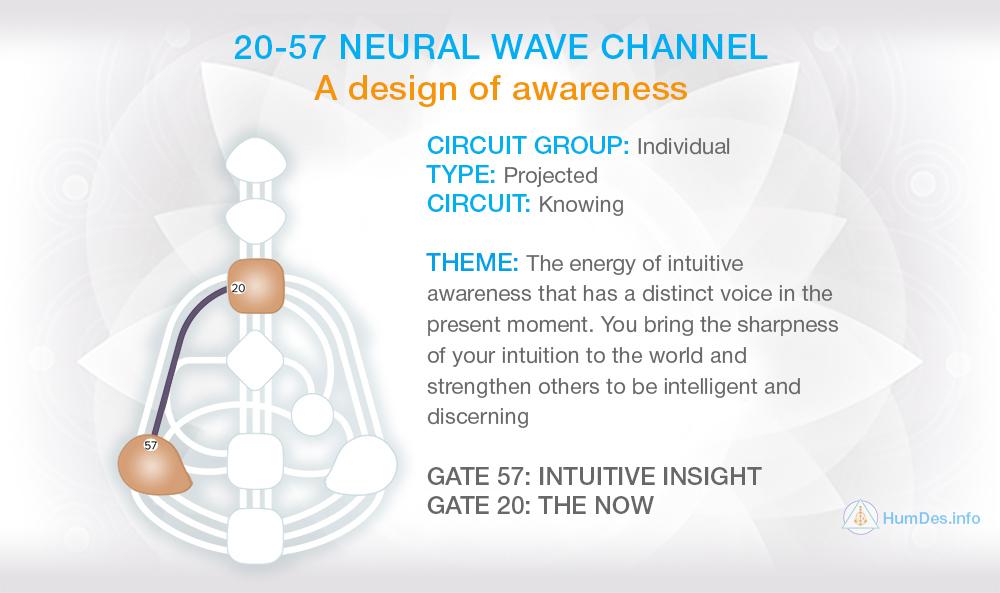 Channel 20-57 Human Design, Neural Wave Channel